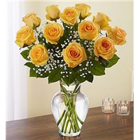 a-dozen-classic-yellow-roses-in-a-vase